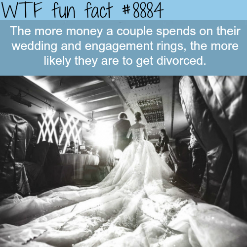 Why you shouldn't spend lots of money on your wedding - WTF fun facts