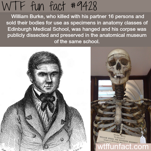 William Burke - WTF fun fact