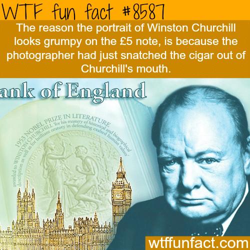 Winston Churchillgrumpy photo- WTF fun facts