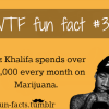wiz khalifa fact