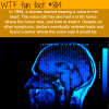 woman hears a voice in her head wtf fun facts