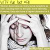 women have more nerve receptors than men wtf fun