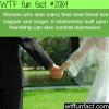 women who marry their best friend live happier