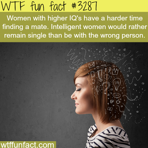 Women with higher IQ -WTF fun facts