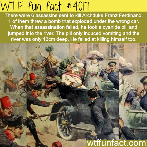 Worst assassin ever - WTF fun facts