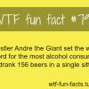 wrestler andre drinks beer