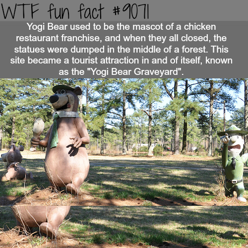 Yogi Bear graveyard - WTF fun facts