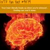 your brain on stress wtf fun fact