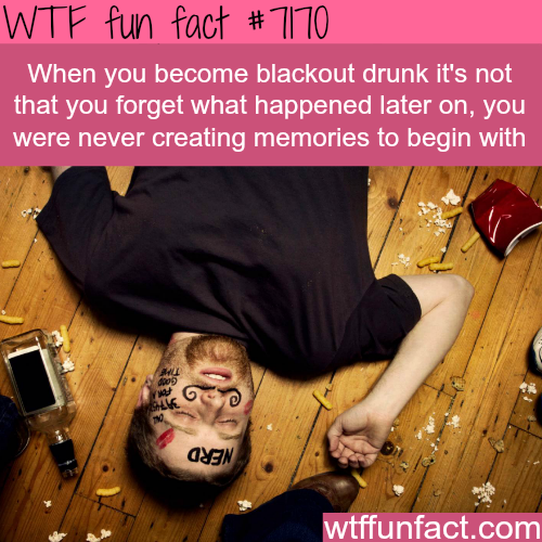 Your brain stop recording memories when you are blackout drunk - WTF Fun Fact