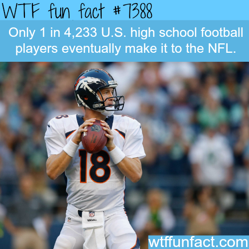 Your chances of being a professional NFL player - WTF fun facts