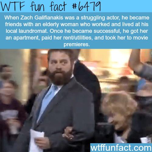 Zack Galifianakis - WTF fun facts