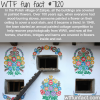 zalipie poland wtf fun facts