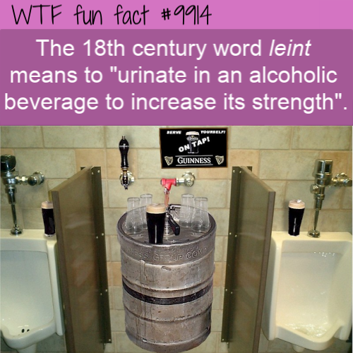 funny word fact leint