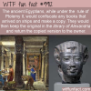 Fun Fact – Ancient Egyptians Book Thieves