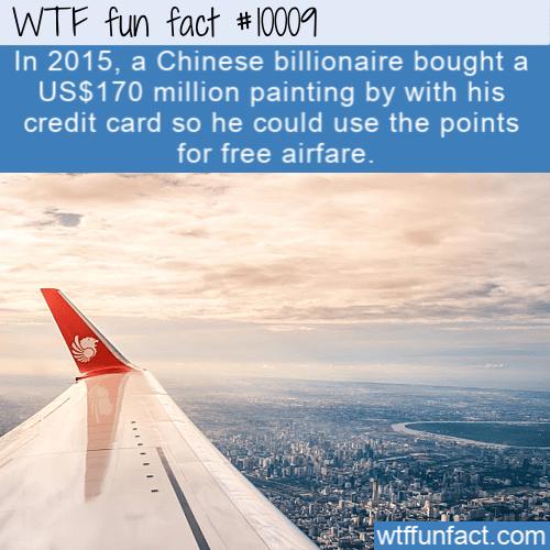 wtf fun fact Billionaire For Free Airfare