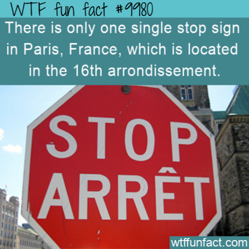 Fun Fact Dont Stop In Paris