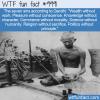 WTF Fun Fact – Gandhi's Sins