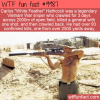 WTF Fun Fact – Original American Sniper