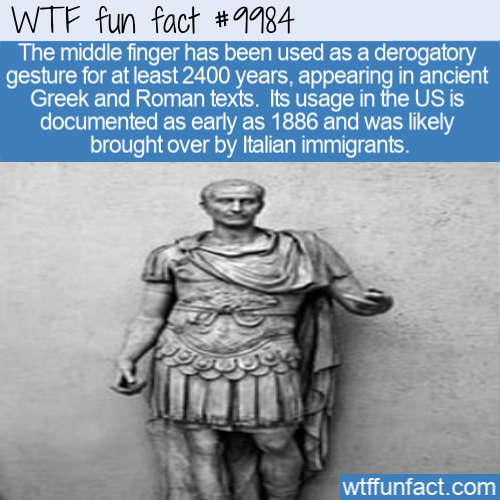 WtF Fun Fact Middle Finger