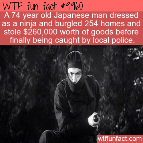 fun fact 74 year old ninja thief
