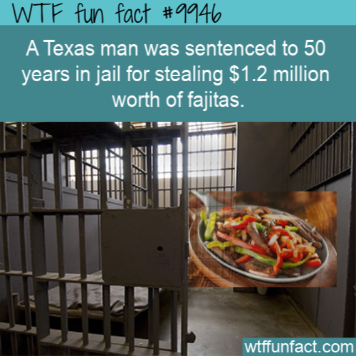 fun fact stolen fajitas