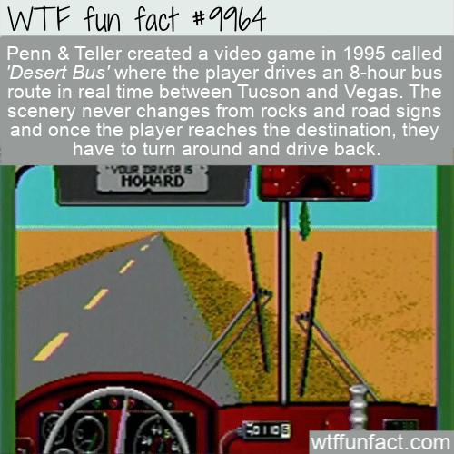 fun fact terrible video game