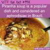 Food Fact – Piranha