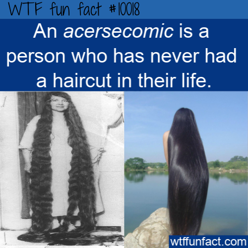 wtf fun fact acersecomic