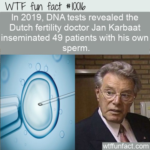wtf fun fact dutch fertility doctor