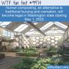 WTF Fun Fact – Human Composting