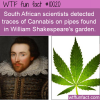 WTF Fun Fact – Shakespeare's Garden