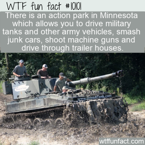 WTF Fun Fact - Destroy Anything