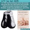 WTF Fun Fact – First Dinosaur Bone