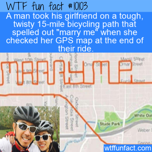 WTF Fun Fact - Marriage PRoposal