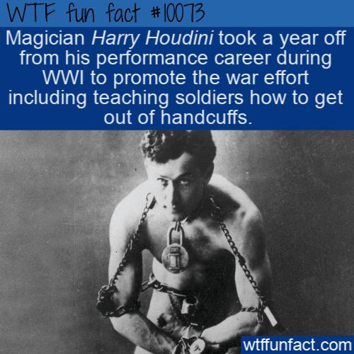 WTF Fun Fact - Helpful Houdini