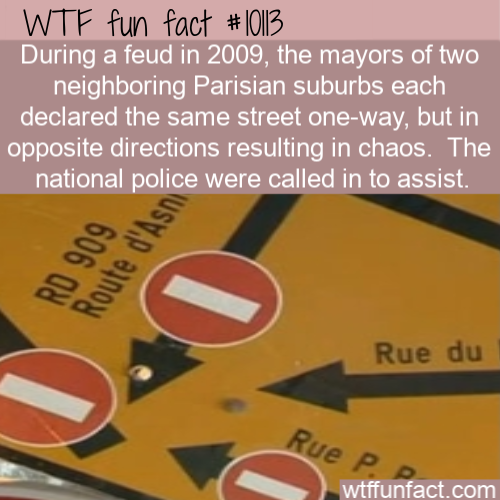 WTF Fun Fact - One Way Wrong Way