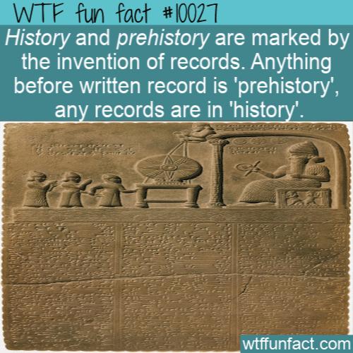 WTF Fun Fact - Prehistory or history