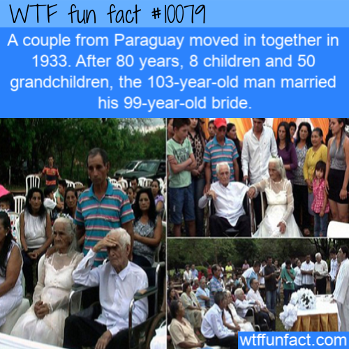 WTF Fun Fact - Real Love Never Give-up