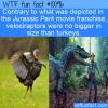 WTF Fun Fact – Small Velociraptor