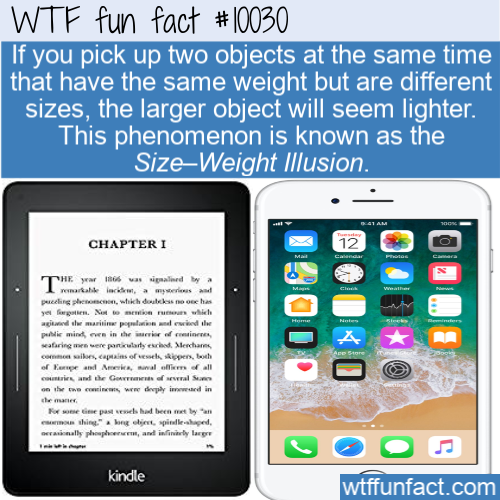 fun fact size weight illusion