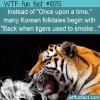 WTF Fun Fact – Korean Folktales