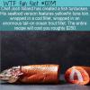 WTF Fun Fact – Fish Turducken
