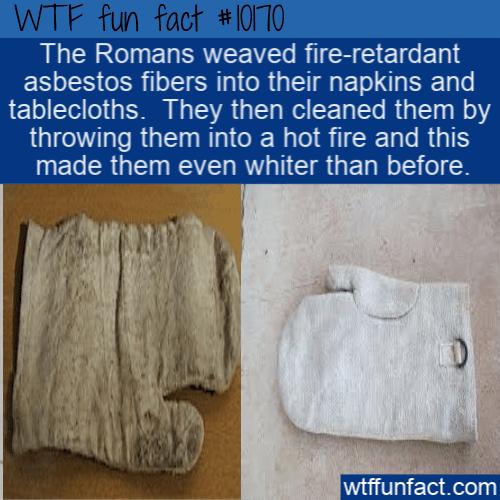 WTF Fun Fact - Asbestos Napkins
