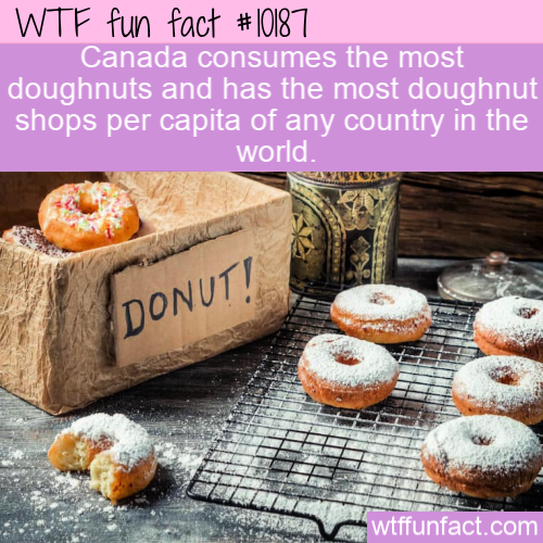 WTF Fun Fact - Doughnut Fact