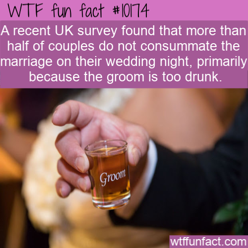 WTF Fun Fact - Drunk Groom