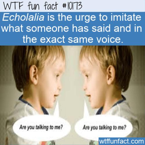 WTF Fun Fact - Echolalia