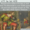 WTF Fun Fact – How Old Is Jack