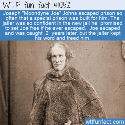 WTF Fun Fact - Moondyne Joe