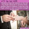 WTF Fun Fact – Wedding Ring Finger