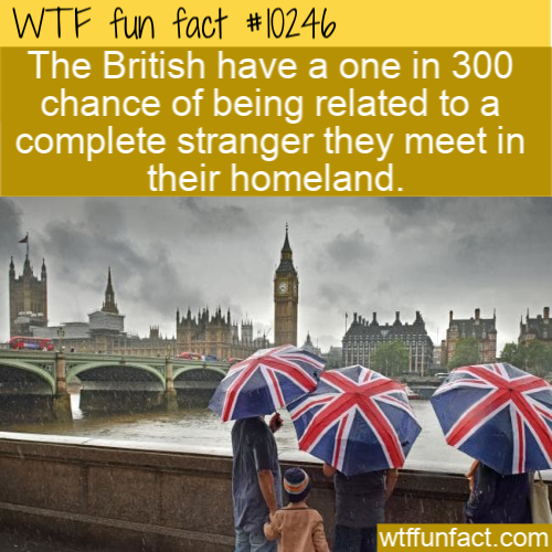 WTF Fun Fact - Brits Related To Strangers
